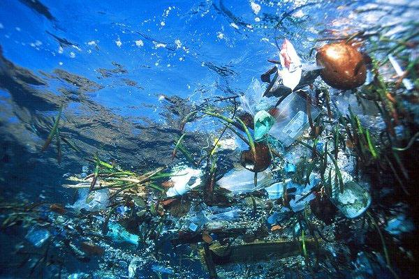 Continentul de gunoi din Pacific