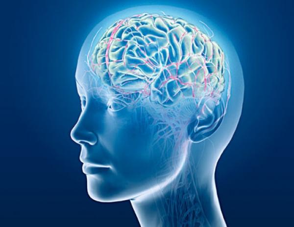 10 lucruri surprinzatoare despre creierul uman