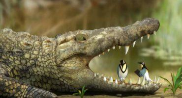Crocodilul – vânătorul din mlastină