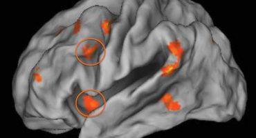 Copilăria petrecută în sărăcie are efecte nocive asupra creierului