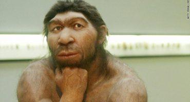 15 trăsături care diferențiază omul de maimută