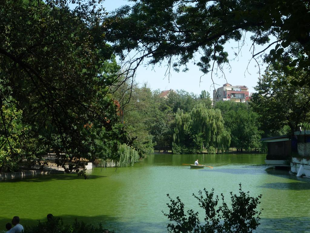 Cișmigiu – Istoria celui mai vechi parc din București