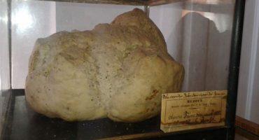 Pâine veche de peste 120 de ani expusă într-un muzeu din România