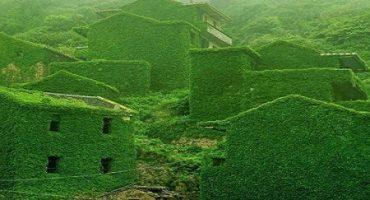 Sat părăsit din China acoperit cu verdeață