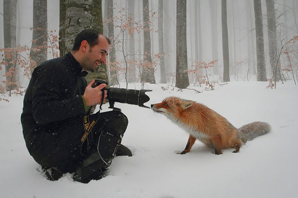 Animale pasionate de fotografie – Galerie Foto