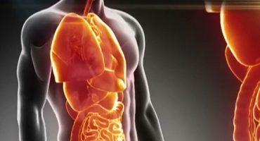 14 organe fără care poți trăi fără probleme