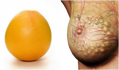 grapefruitsani