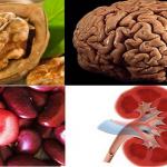 10 alimente care seamana cu organele corpului uman