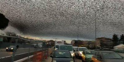 Fenomenul horror ce apare pe cerul Romei