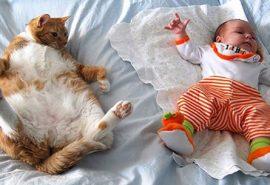 20 de curiozități despre bebeluși