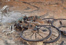 O căruță cu cai veche de 2500 de ani a fost descoperită de arheologi