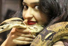 22 de curiozități interesante despre ... șerpi