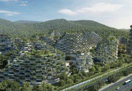 Orașul forestier care se construiește în China pentru a elimina poluarea
