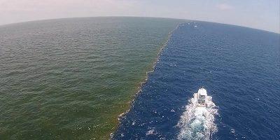 De ce apele Mării Baltice și Mării Nordului nu se amestecă?