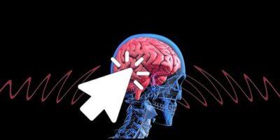 Este adevărat că inteligența se moștenește?
