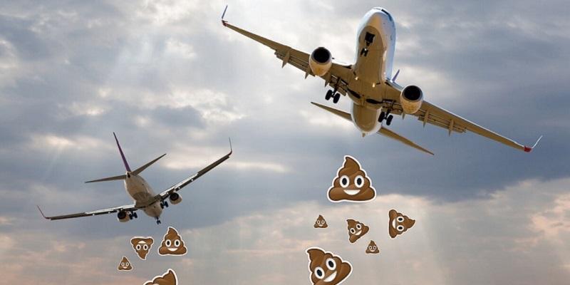 zbor într-un avion cu varicoză