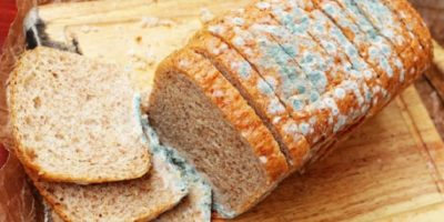 Ce se întâmplă dacă mănânci pâine mucegăită (chiar și o felie mică)