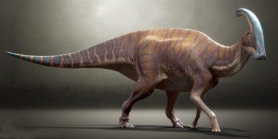 Care a fost durata zilei și a anului în timpul dinozaurilor?