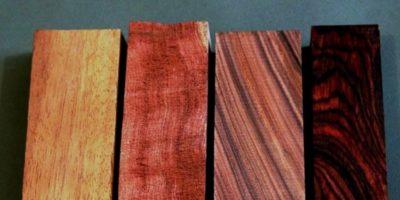 Ce copac are cel mai rezistent lemn