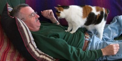 De ce pisicile ne calcă cu labele?