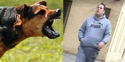 De ce latră câinii la persoanele în stare de ebrietate?