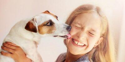 De ce un câine încearcă mereu să lingă fața proprietarului?