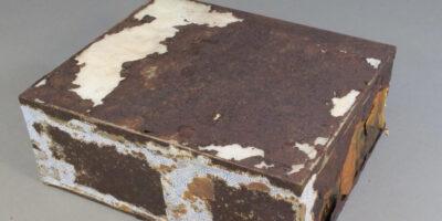 Descoperit în 2017 în Antarctica: Tortul care a rămas conservat chiar și după 106 ani