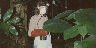 Gympie-gympie: urzica australiană a cărei înțepătură doare 3 luni