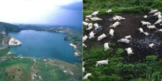 Misterul lacului Nyos, incidentul bizar care a ucis 1.700 de omeni și 3.500 de animale