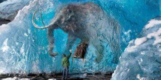 5 descoperiri ciudate făcute în ghețarii care se topesc