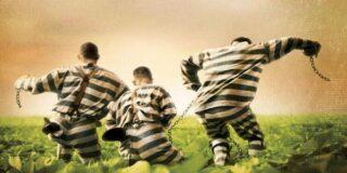 De ce în Germania nu se pedepsește evadarea din închisoare?
