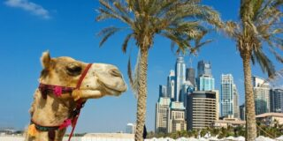 În ce țară e Dubai? Ce este interzis să faci în Dubai?